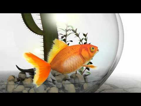 Aprilaire Humidifier Goldfish Commercial
